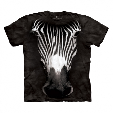 THE MOUNTAIN Zebras