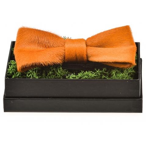 Ponio kailio oranžinė peteliškė
